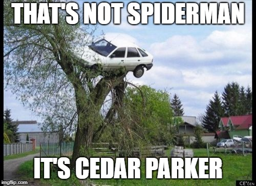 That's not Spiderman, it's Cedar Parker