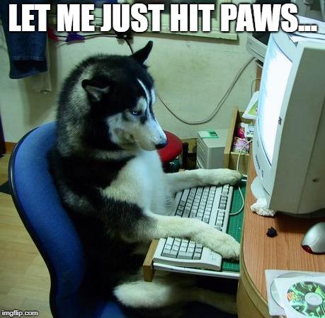 Hit Paws